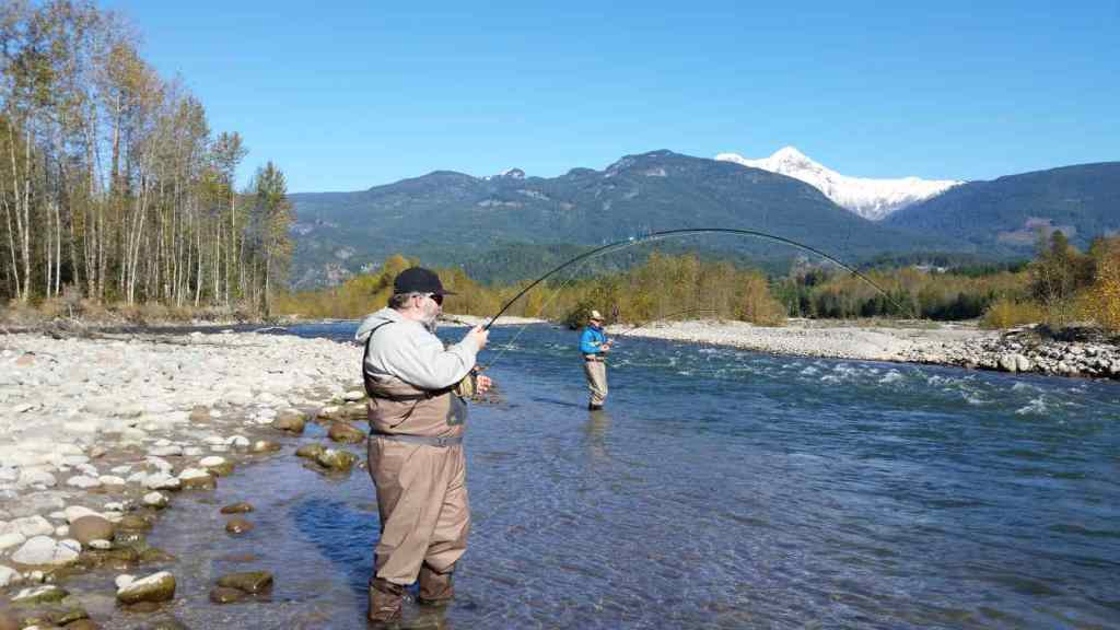 Double header Chum Salmon action