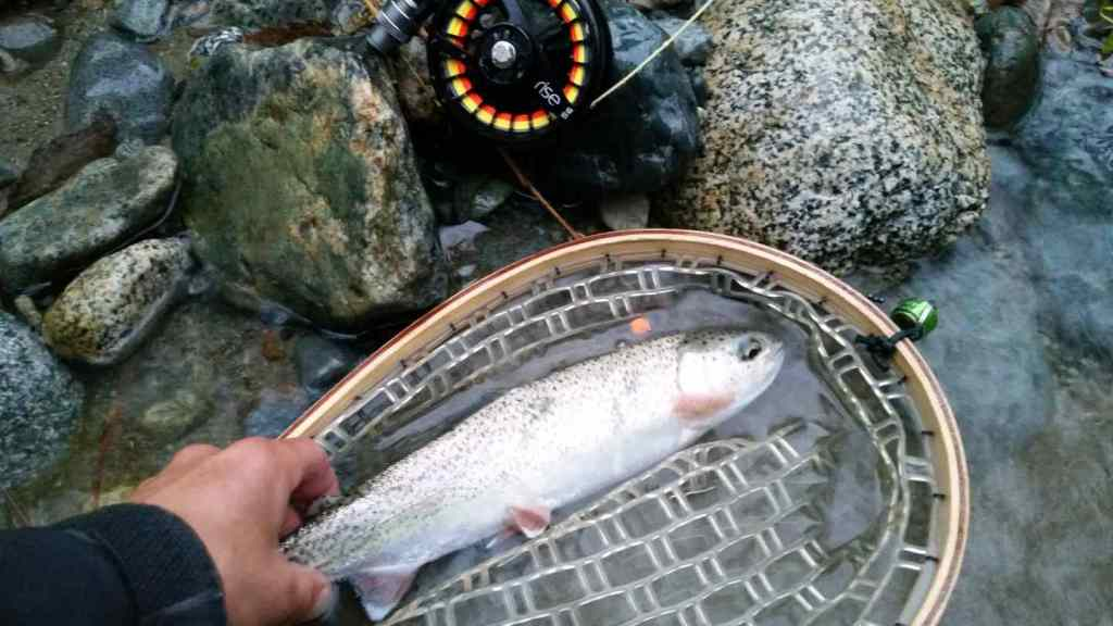 Fly fishing Pemberton BC