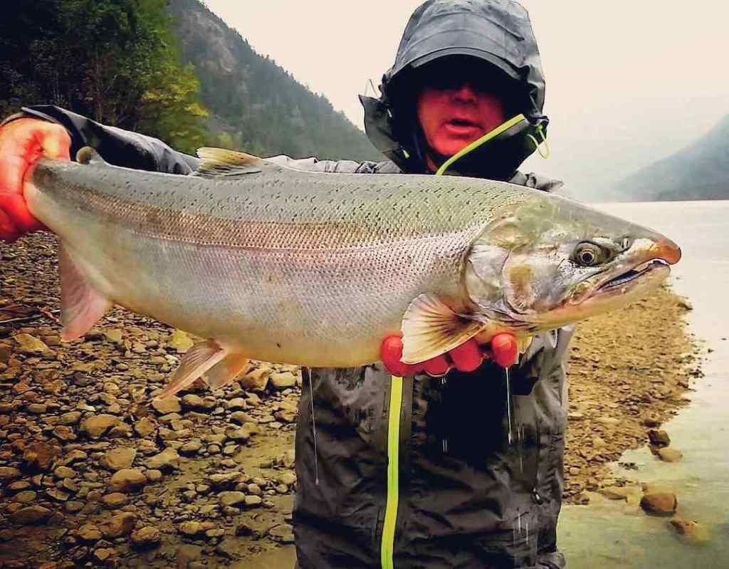 Coho Salmon fishing in BC