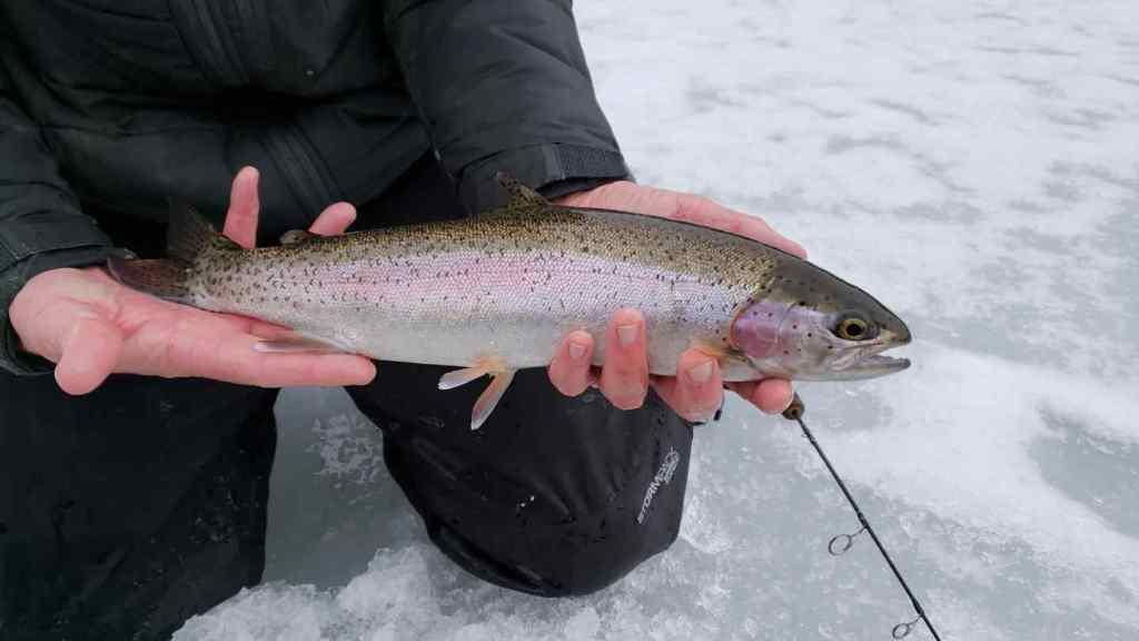Whistler Ice Fishing guides