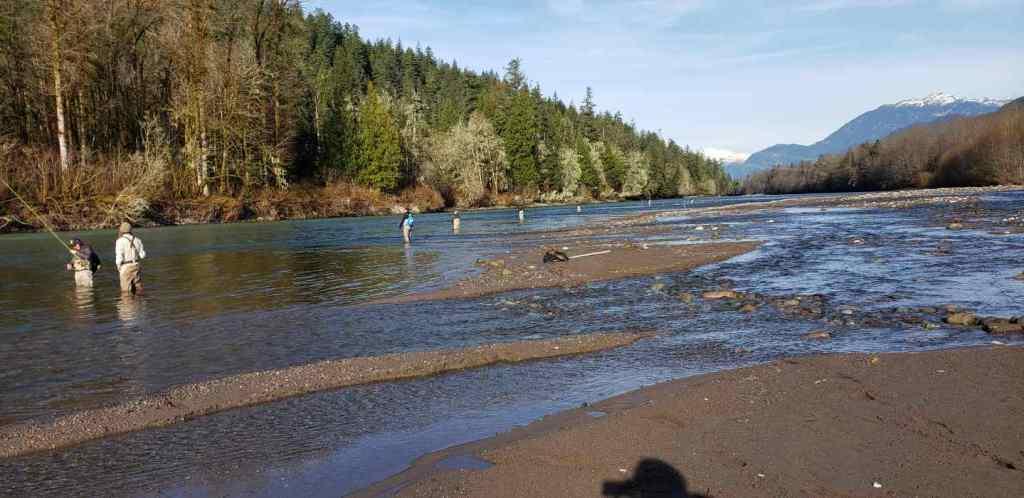 Corporate freshwater Salmon fishing trips