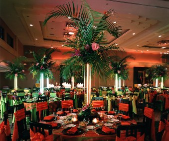 Tropical Holiday party