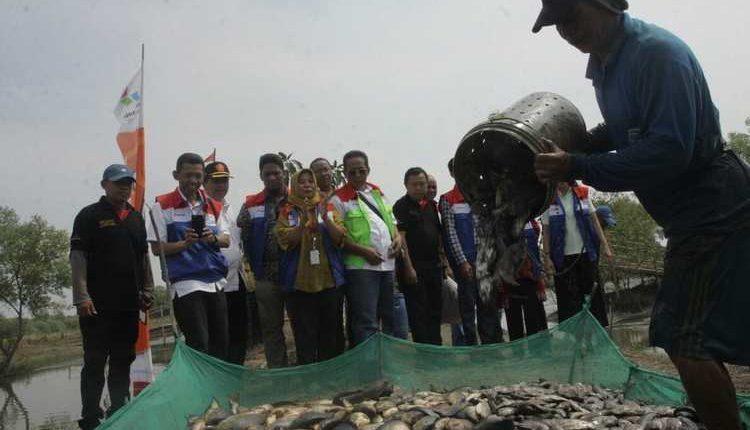 Program Ekowisata Pertamina