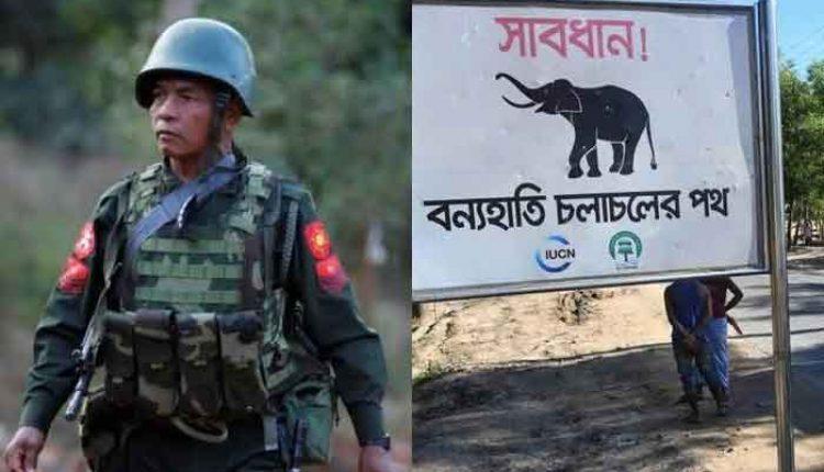 Tak Cuma Tentara Myanmar, gajah pun juga