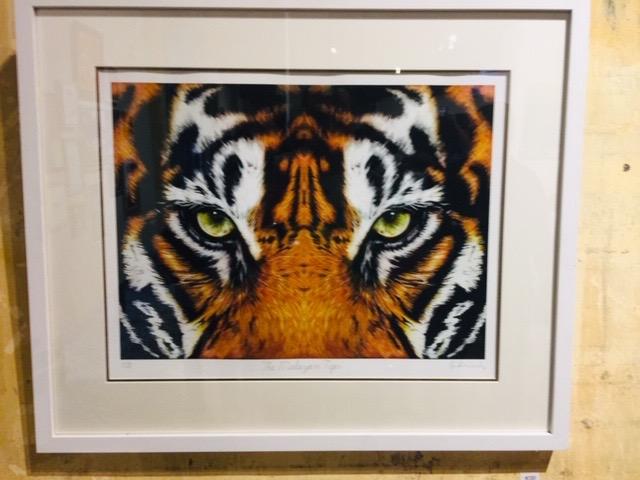 Malayan Tiger by Ivan Gabriel