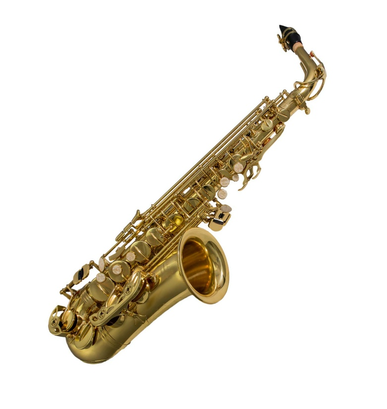 Elkhart 100AS Student Alto Saxophone available at Penarth Music Centre