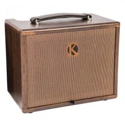 Kinsman KAA45 Acoustic Amplifier available at Penarth Music Centre