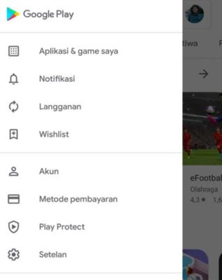 Pengaturan Google Play Store