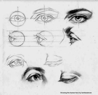 human-face-tutorial