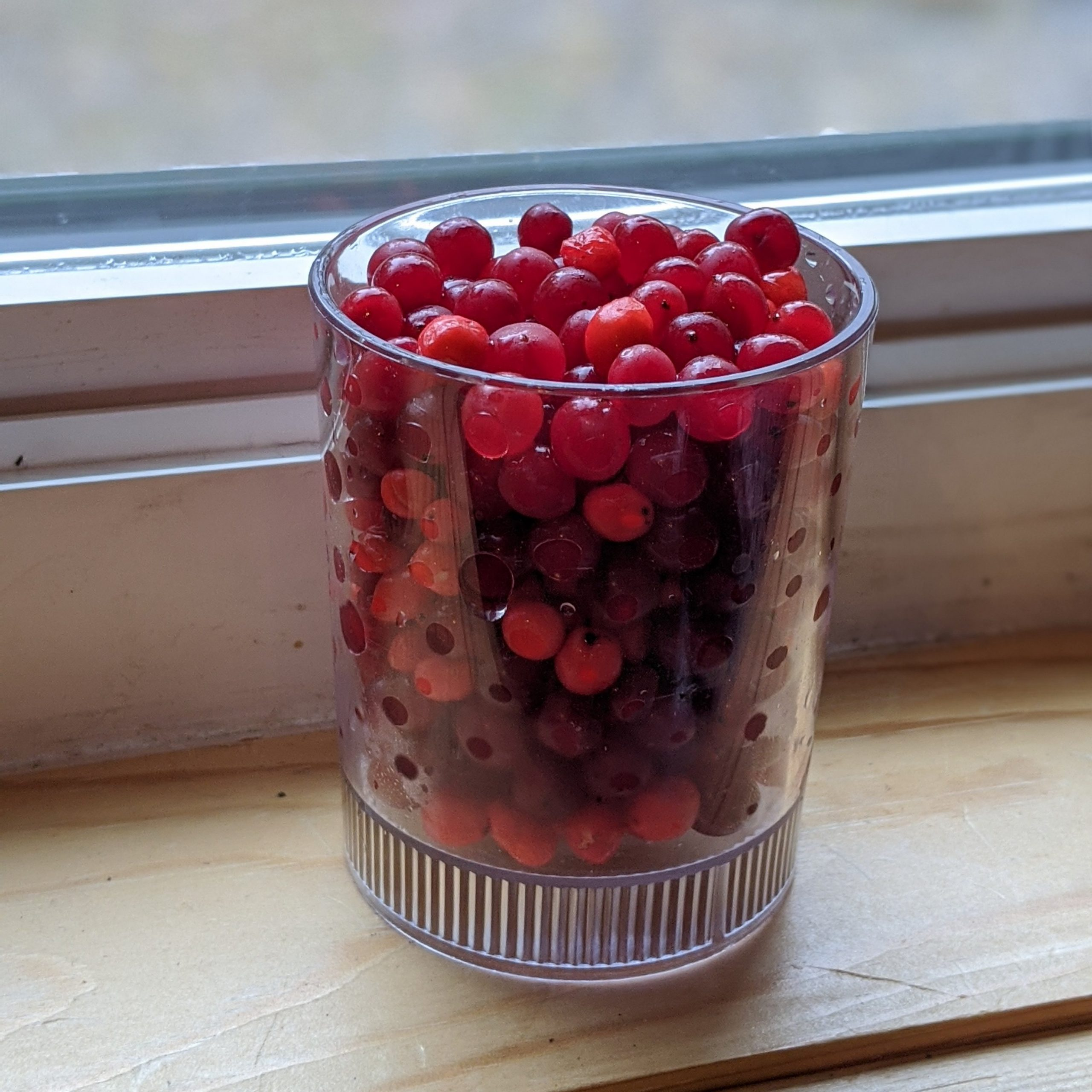 High Bush Cranberry Sauce