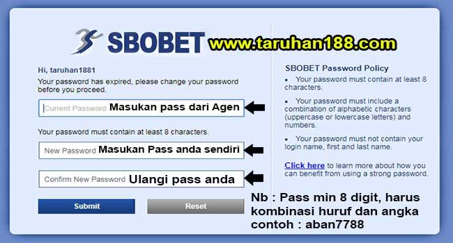 Tampilan untuk mengganti password