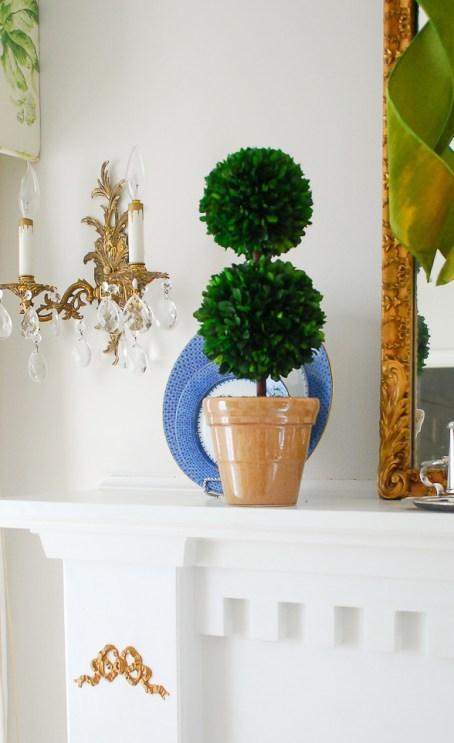 boxwood-topiary-detail