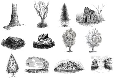 pen and ink drawing tutorials