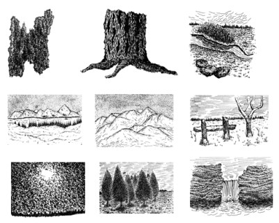 step by step pen and ink drawings