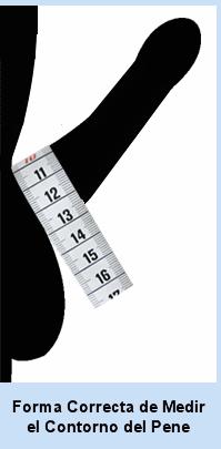 como medir el pene