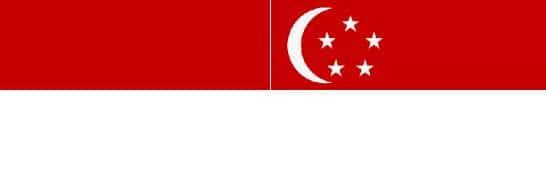 Indonesian Translator Singapore