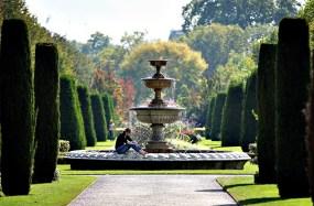 Image result for Regent's Park