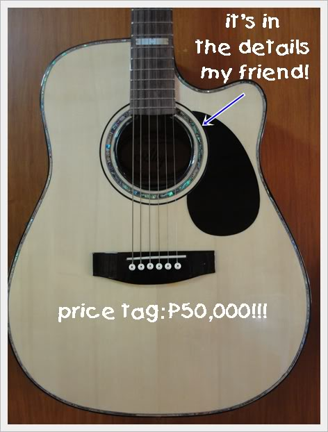 Alegre Guitar P50K Price