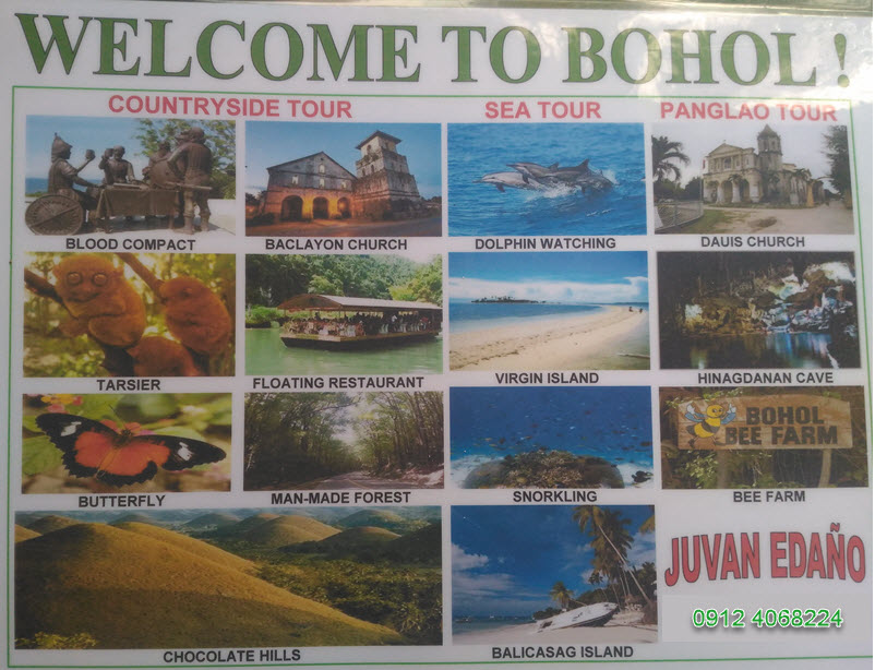 Bohol Tour Services and Rates