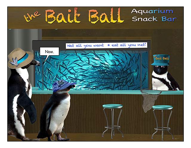aquarinope-4.jpg