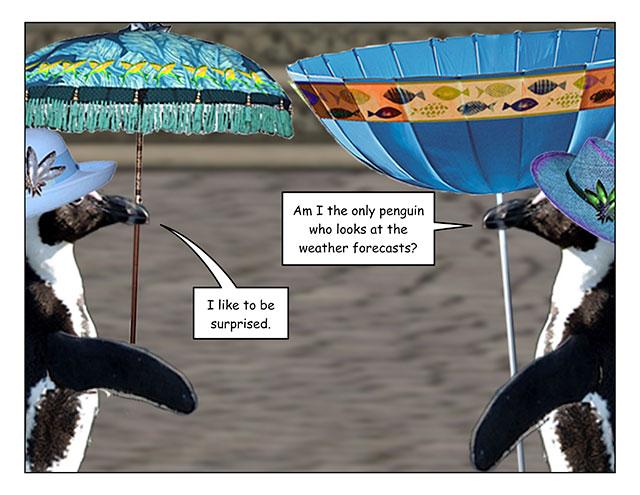 parasols-3.jpg