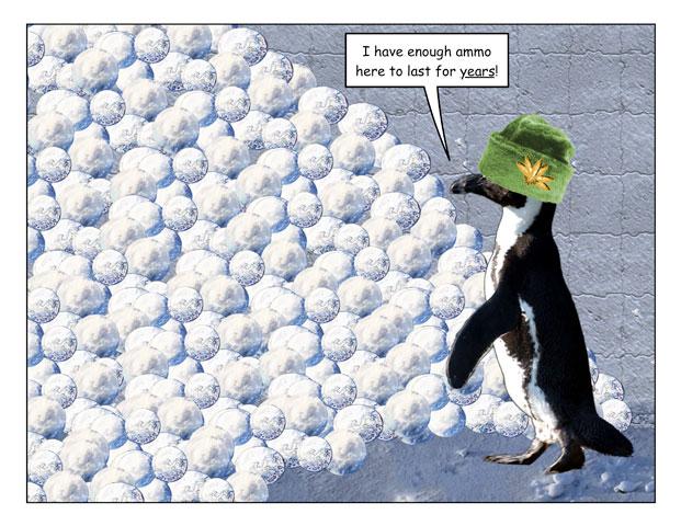 snowfort-2.jpg