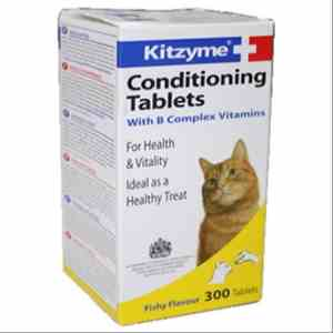 Kitzyme Conditional Tablets with B Complex Vitamins