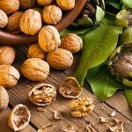 Ternyata Kacang Kenari Bisa Bantu Atasi Masalah Vitalitas Pria, Lho