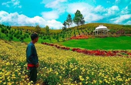 Taman Seribu Bunga Berastagi - blog.reservasi.com