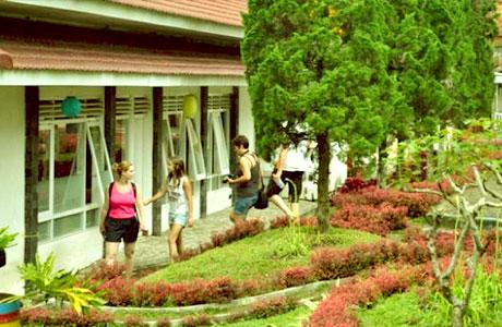 Hotel Kebun Teh Wonosari Lawang Malang