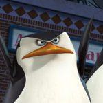 ペンギンズfromマダガスカルの画像