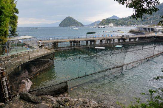 伊豆・水戸シーパラダイスの自然飼育所