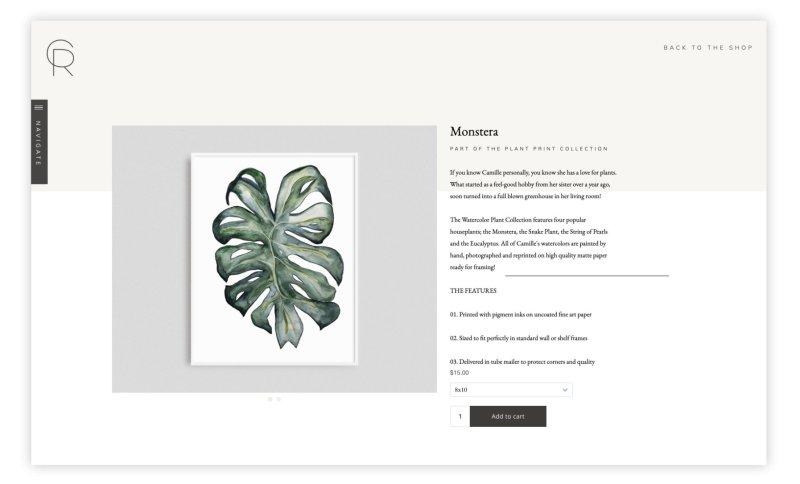 Single product page design with image on the left and description on the right