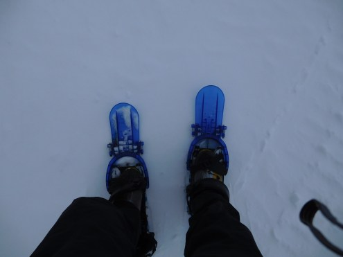 Skis or snowshoes???