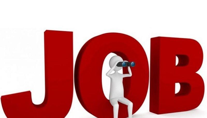 cara mencari kerja