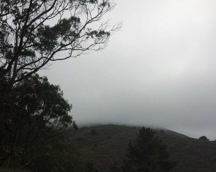 A mist-covered San Bruno Mountain.