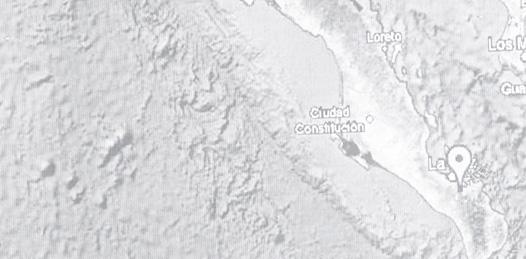 Sismo de 3.7 grados causó la  muerte de un minero Rofomex