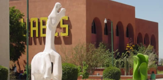 Celebrará UABCS el Día Mundial  del Desafío Universitario