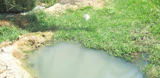 Surgen nuevos brotes de aguas negras de residencial La  Cima