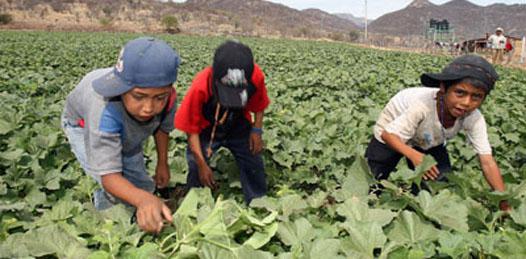 Se pronuncian por mejorar las condiciones de la niñez sudcaliforniana