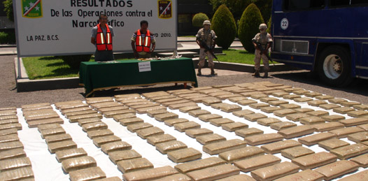 Decomisa el ejército 649 kilos de marihuana