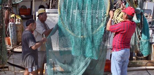 Iniciará Foro Estatal para la creación de la Ley de Pesca y Acuacultura