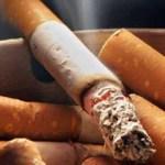 El tema del Día Mundial sin Tabaco 2010 es el género y el tabaco, donde se crearán campañas de concientización principalmente en mujeres y niñas, que han sido afectadas por la mercadotecnia, y con esto controlar la epidemia de tabaquismo y sus letales consecuencias.