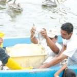"""Sin embargo el ordenamiento en la entidad se ha limitado a empadronar a pescadores y """"chipear"""" las embarcaciones, pangas generalmente, embarcaciones con motor fuera de borda que tienen una vida media corta."""