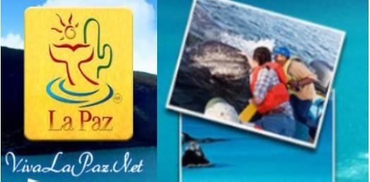 Pide Emprhotur al  Congreso rechazar  la Ley de Turismo