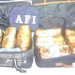 Fuentes extra-oficiales de la delegación estatal de la Procuraduría General de la República -PGR-, destacaron que ambas maletas tenían como destino la ciudad de Tijuana, BC.