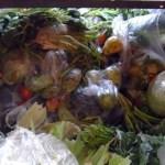 La gran mayoría de la comida descartada por esta empresa se encuentra en óptimo estado, pero es tirada a la basura por cuestión de espacio en almacén.