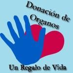 Las cifras de la Secretaría de Salud, en el país, precisan que hay 130 mil personas que requieren de trasplante renal, porque están en una etapa avanzada de la enfermedad, y en la mayoría de ellos es consecuencia de enfermedades crónicas que son la primera causa de muerte en México como la diabetes.