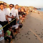 La liberación de tortugas golfinas, que se hará el sábado en Cabo azul, marcará la pauta para la temporada de liberaciones.