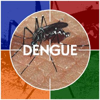 Han disminuido los casos de dengue en la delegación de Cabo San Lucas